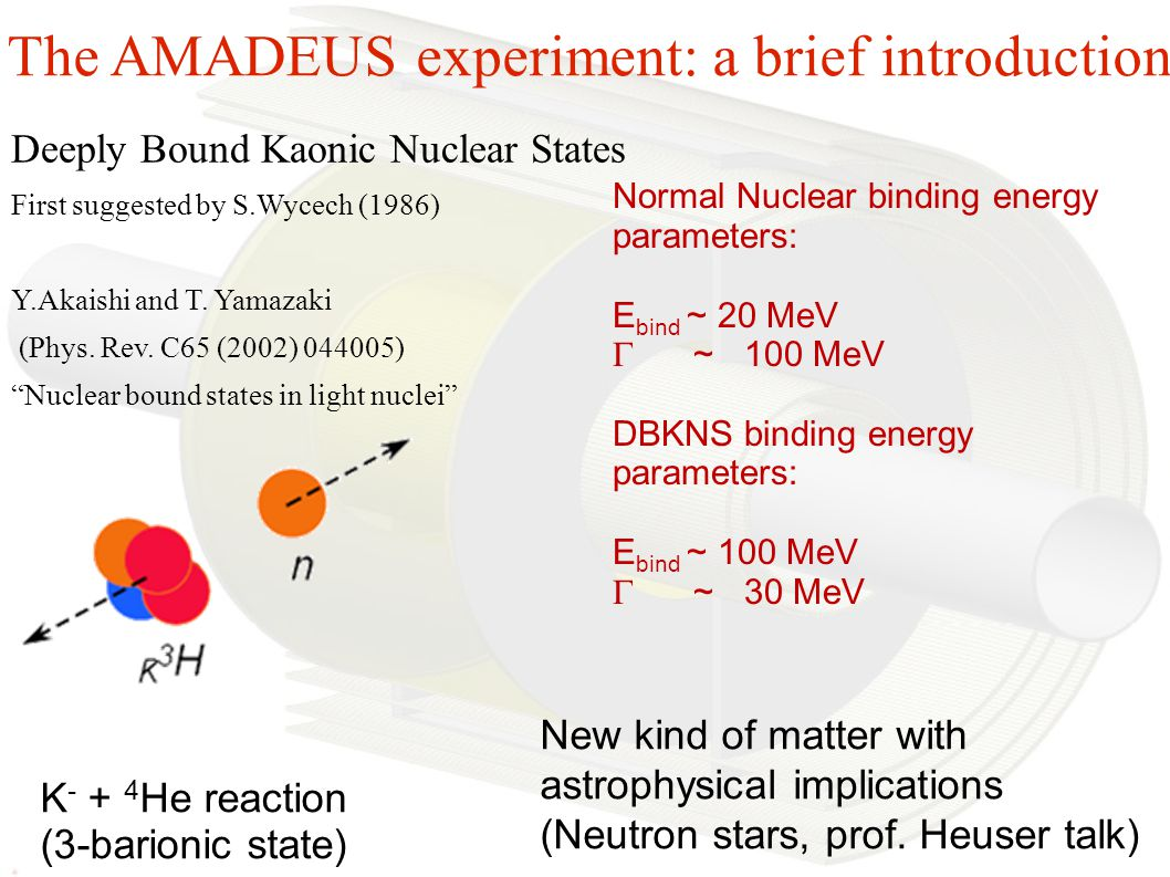 The AMADEUS experiment: a brief introduction