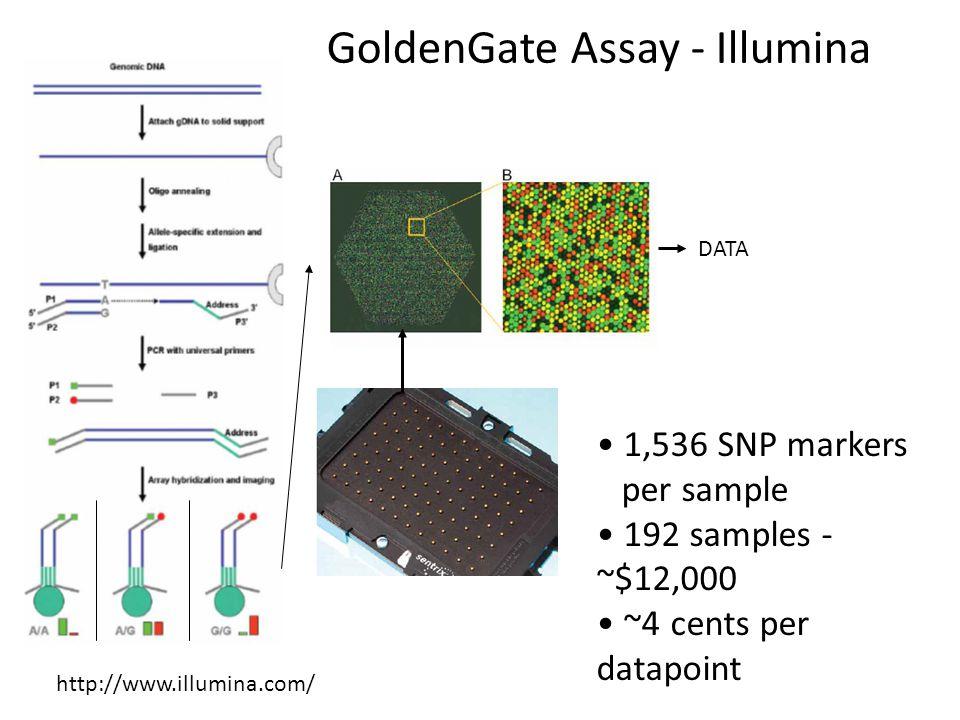 GoldenGate Assay - Illumina