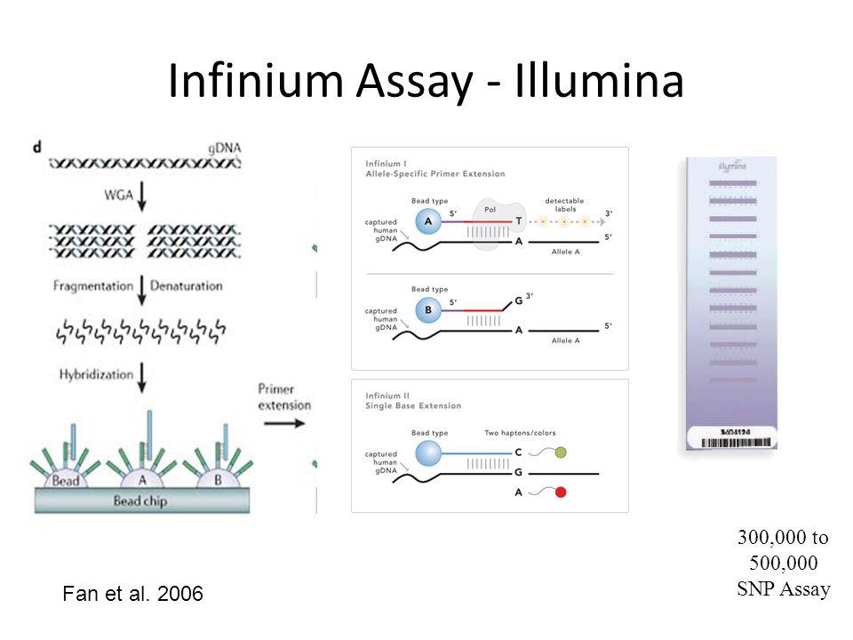 Infinium Assay - Illumina
