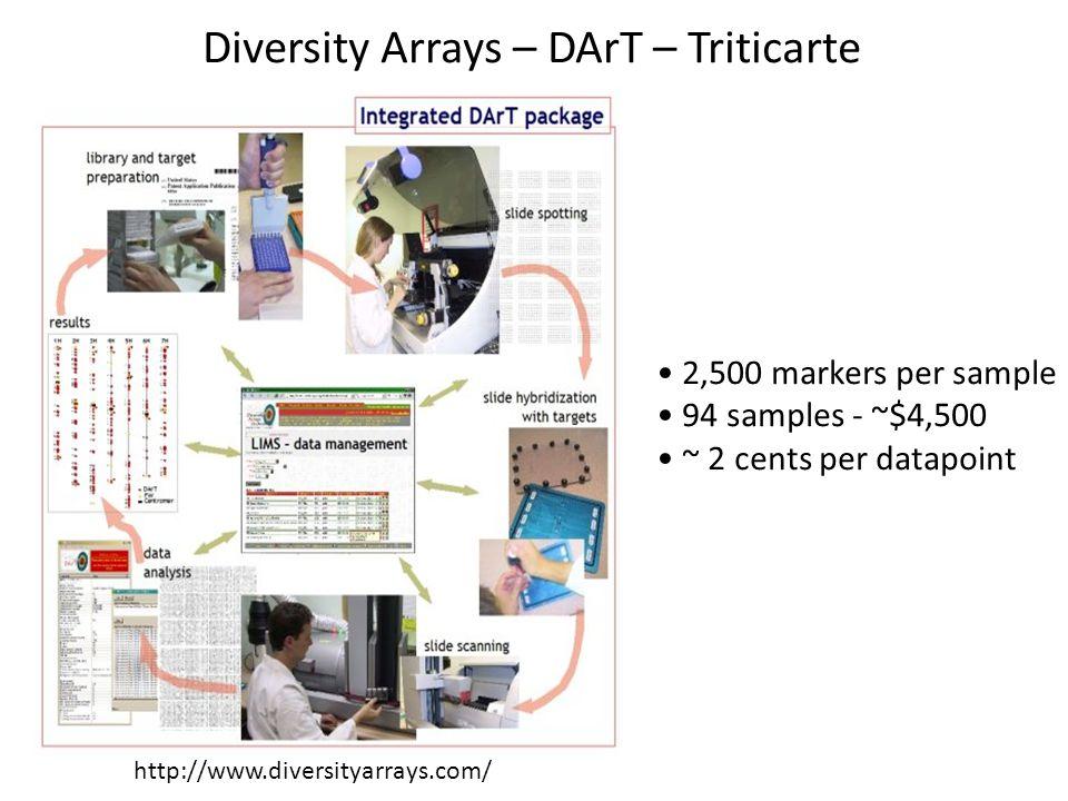 Diversity Arrays – DArT – Triticarte