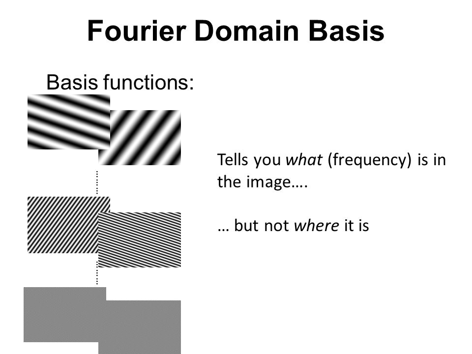 Fourier Domain Basis Basis functions: