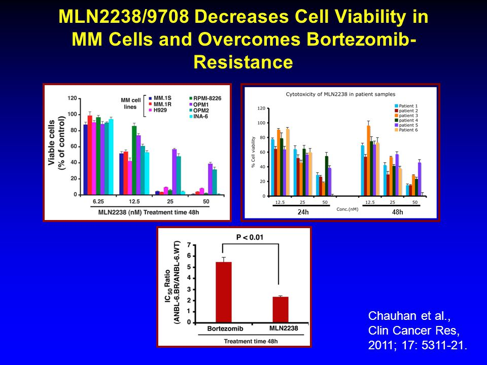 MLN2238/9708 Decreases Cell Viability in MM Cells and Overcomes Bortezomib-Resistance