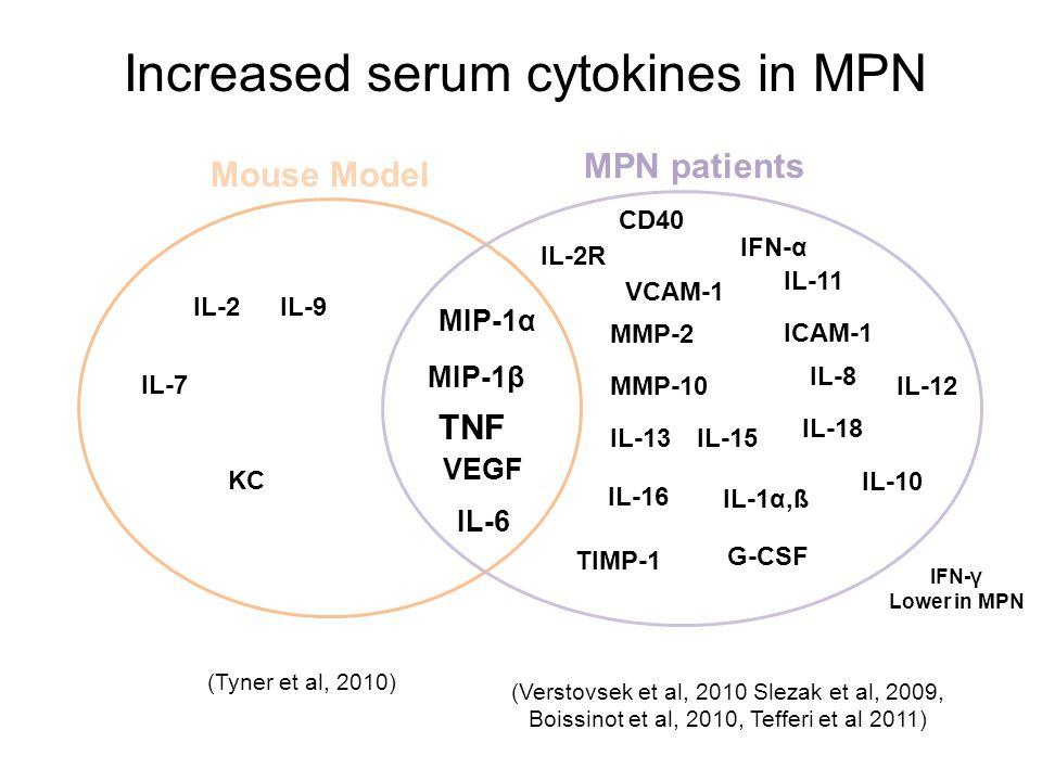 Increased serum cytokines in MPN