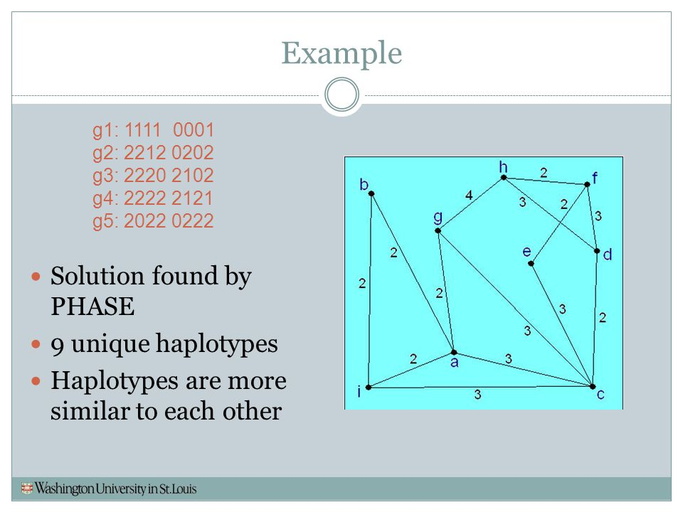 Example Solution found by PHASE 9 unique haplotypes
