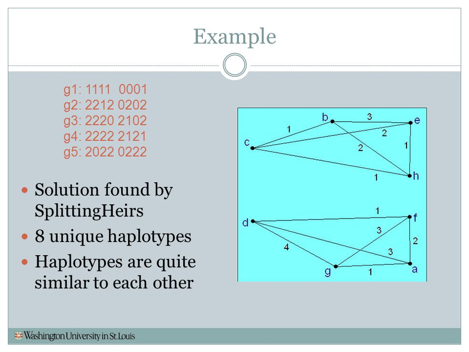 Example Solution found by SplittingHeirs 8 unique haplotypes