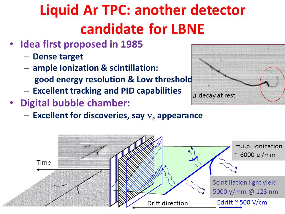 Liquid Ar TPC: another detector candidate for LBNE