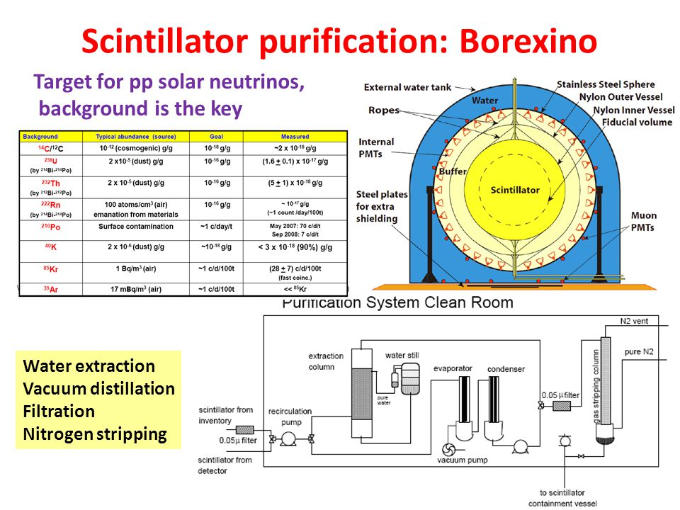 Scintillator purification: Borexino