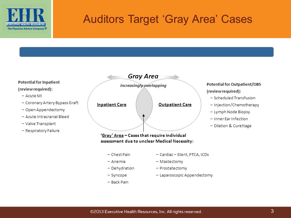 Auditors Target 'Gray Area' Cases