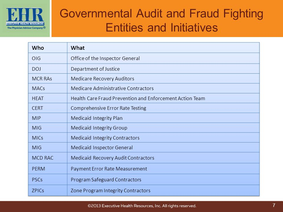 Governmental Audit and Fraud Fighting Entities and Initiatives
