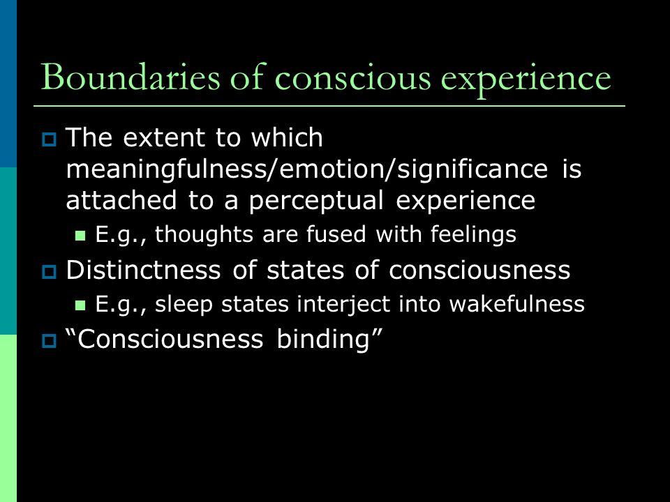 Boundaries of conscious experience