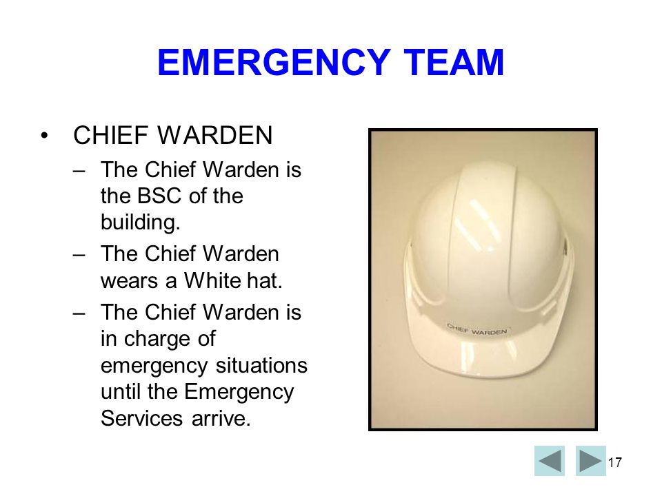 EMERGENCY TEAM CHIEF WARDEN