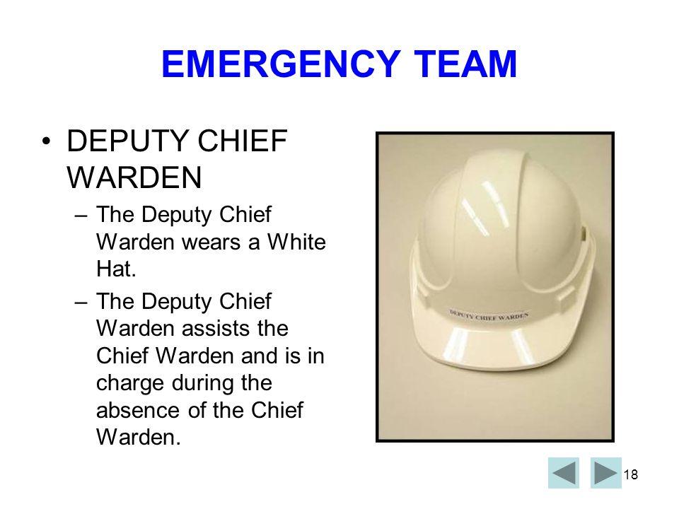 EMERGENCY TEAM DEPUTY CHIEF WARDEN