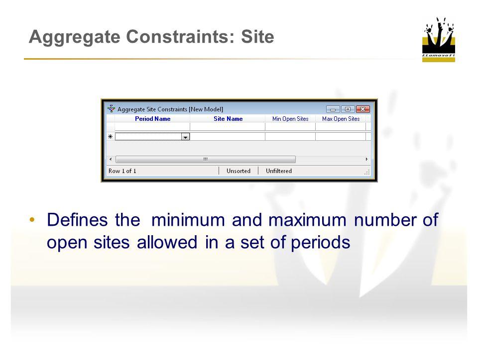 Aggregate Constraints: Site