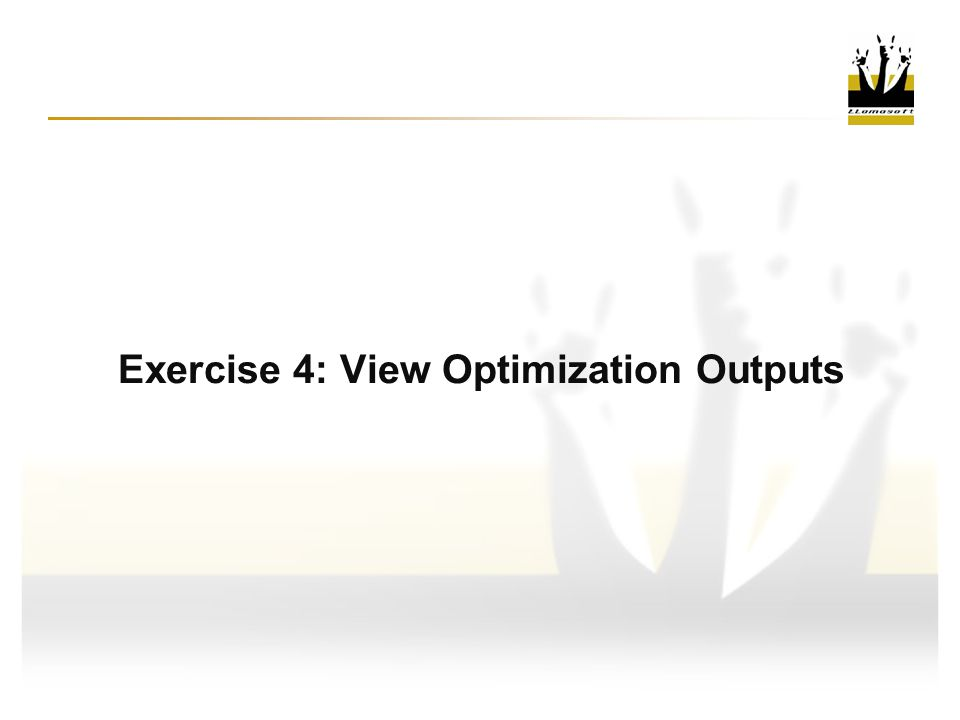 Exercise 4: View Optimization Outputs