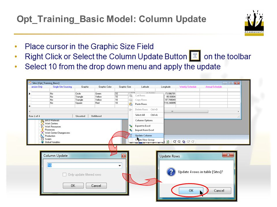 Opt_Training_Basic Model: Column Update