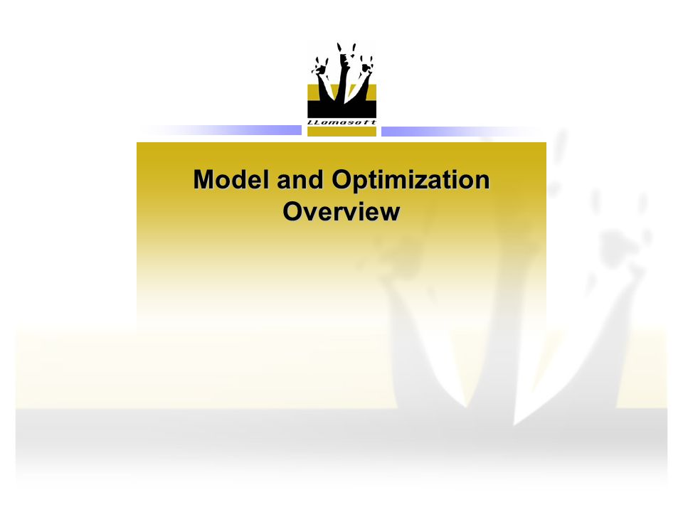 Model and Optimization Overview