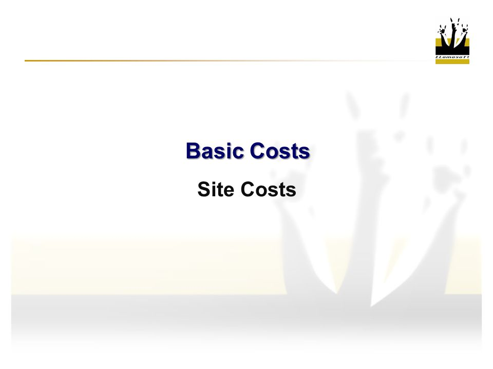 Basic Costs Site Costs