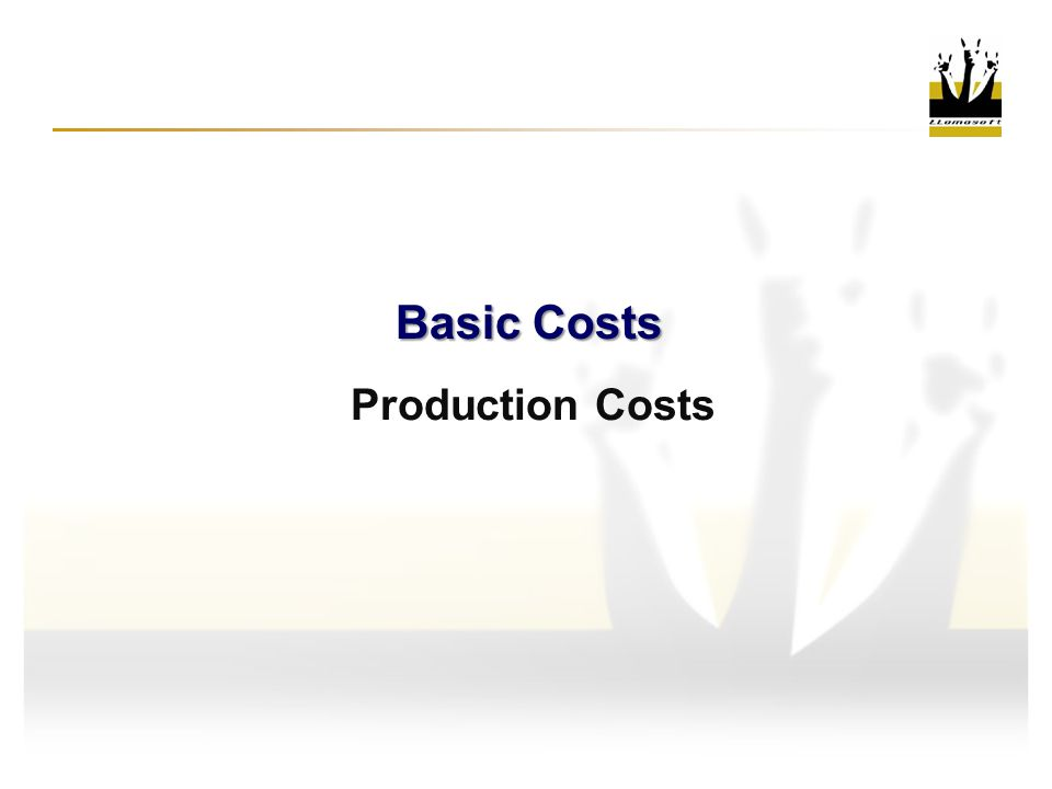 Basic Costs Production Costs