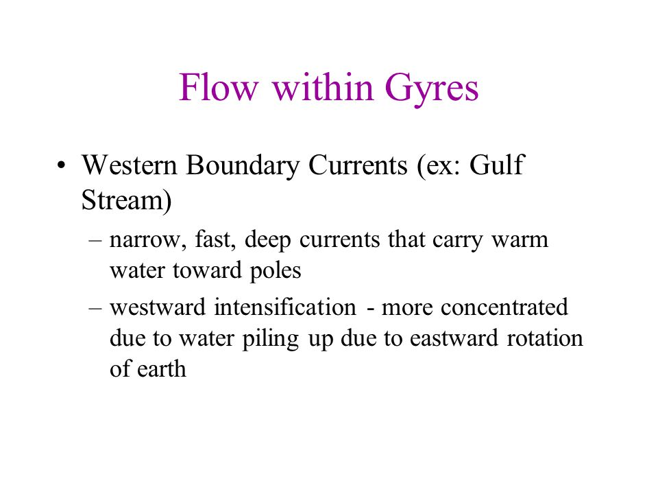 Flow within Gyres Western Boundary Currents (ex: Gulf Stream)