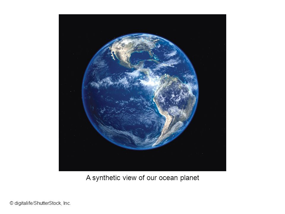 A synthetic view of our ocean planet