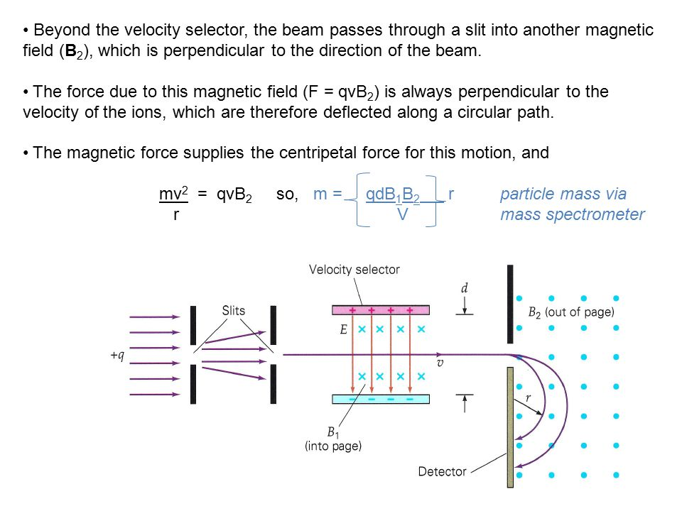 Beyond the velocity selector, the beam passes through a slit into another magnetic field (B2), which is perpendicular to the direction of the beam.