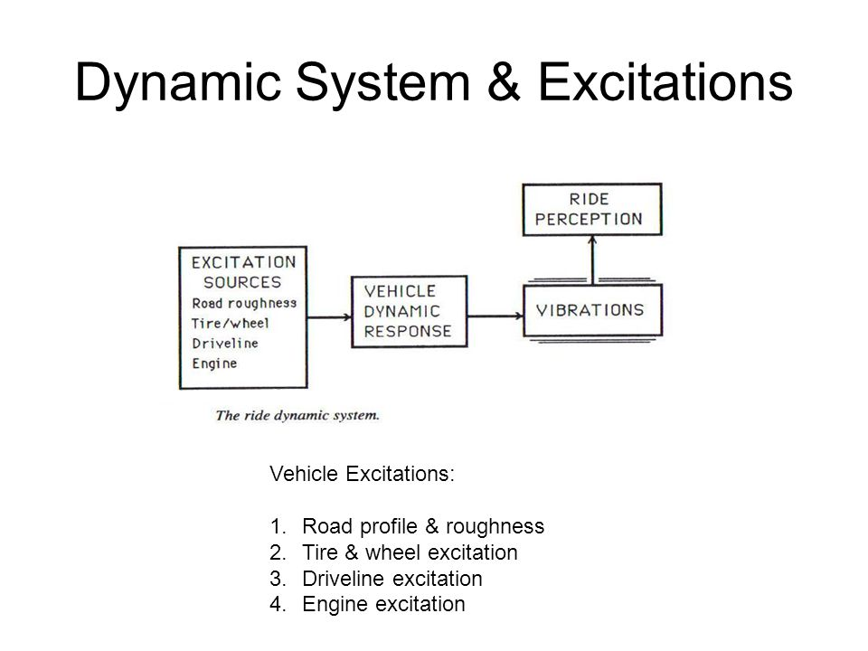 Dynamic System & Excitations