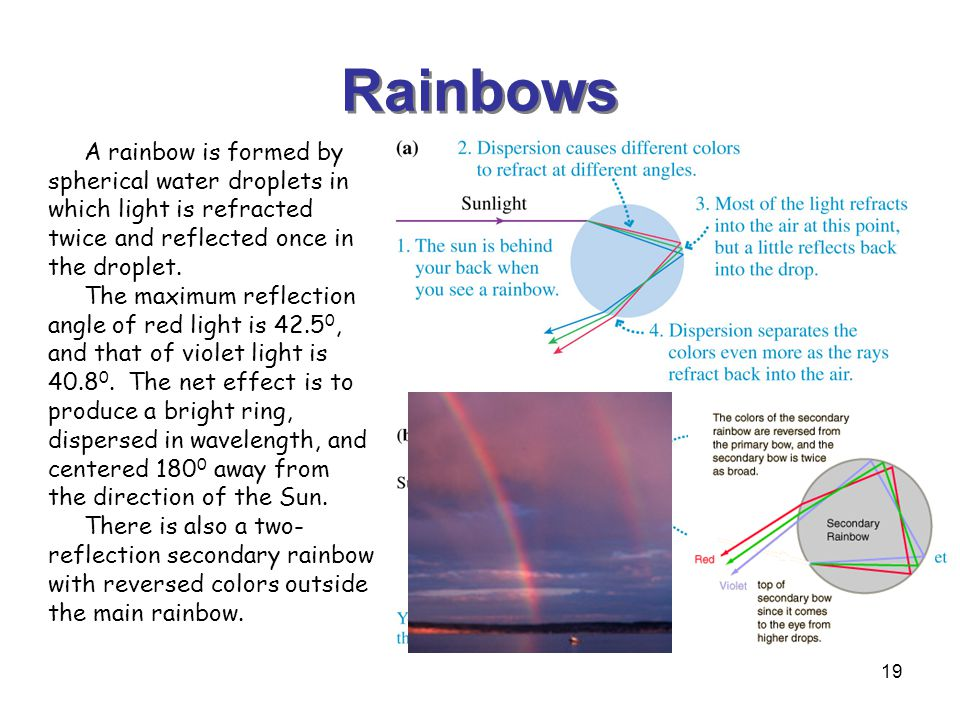 Rainbows A rainbow is formed by spherical water droplets in which light is refracted twice and reflected once in the droplet.