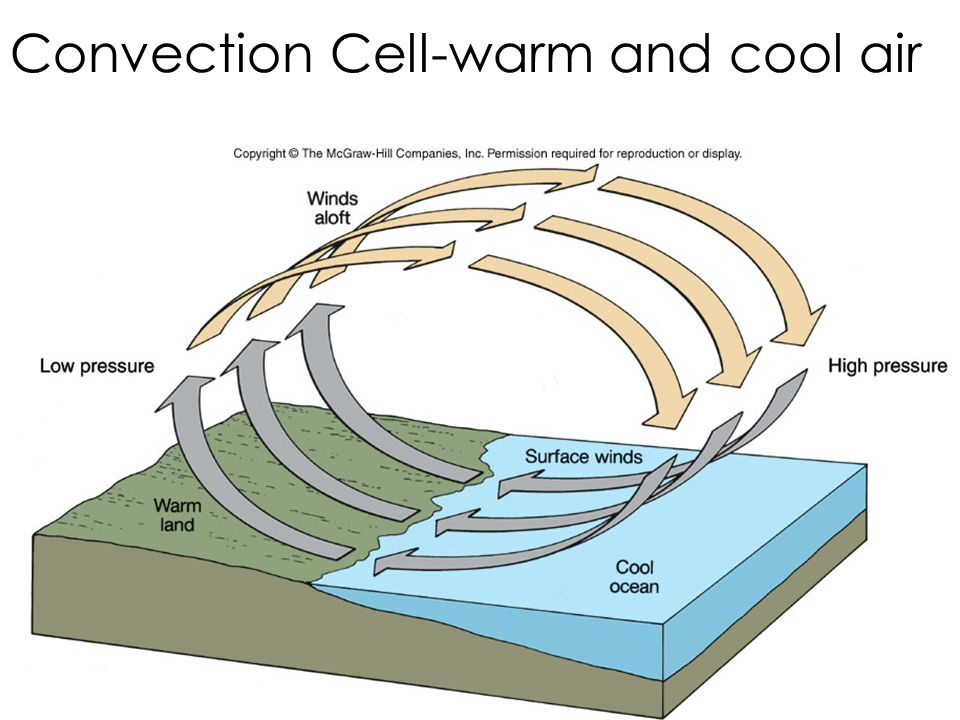Convection Cell-warm and cool air