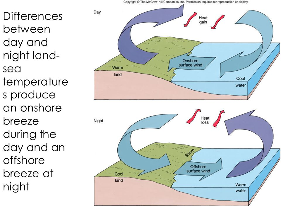 Differences between day and night land-sea temperatures produce an onshore breeze during the day and an offshore breeze at night