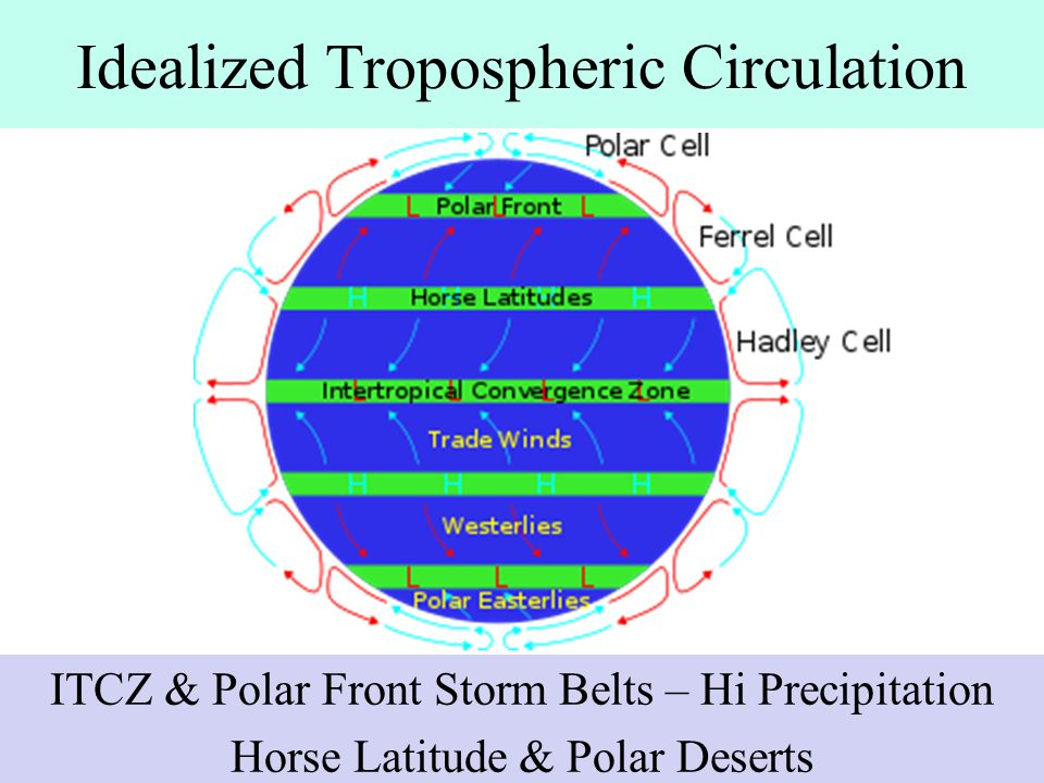 Idealized Tropospheric Circulation
