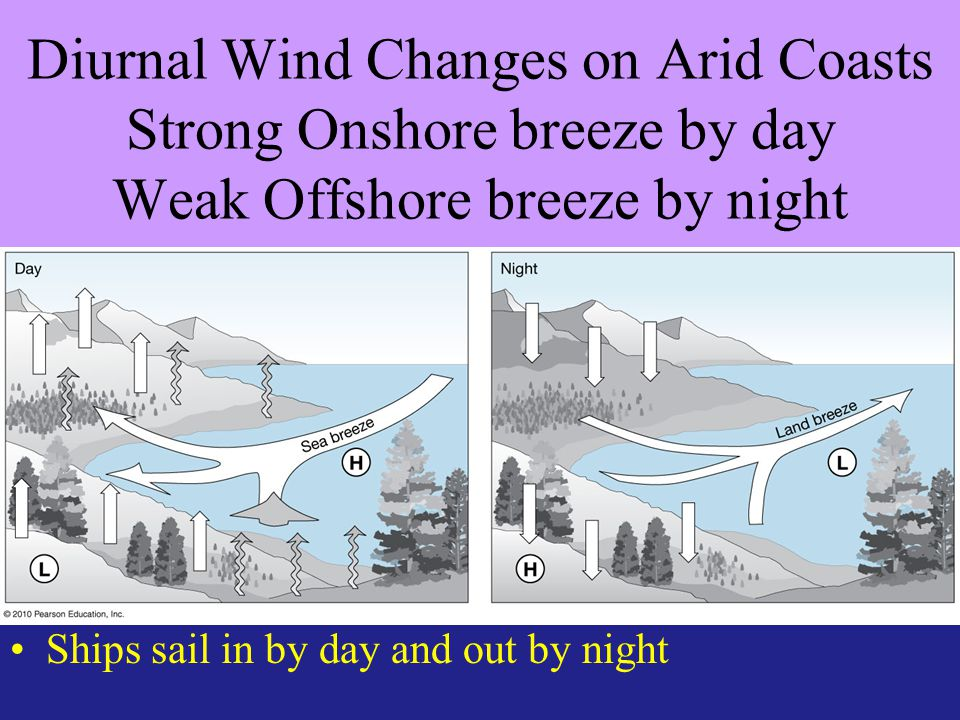 Diurnal Wind Changes on Arid Coasts Strong Onshore breeze by day Weak Offshore breeze by night