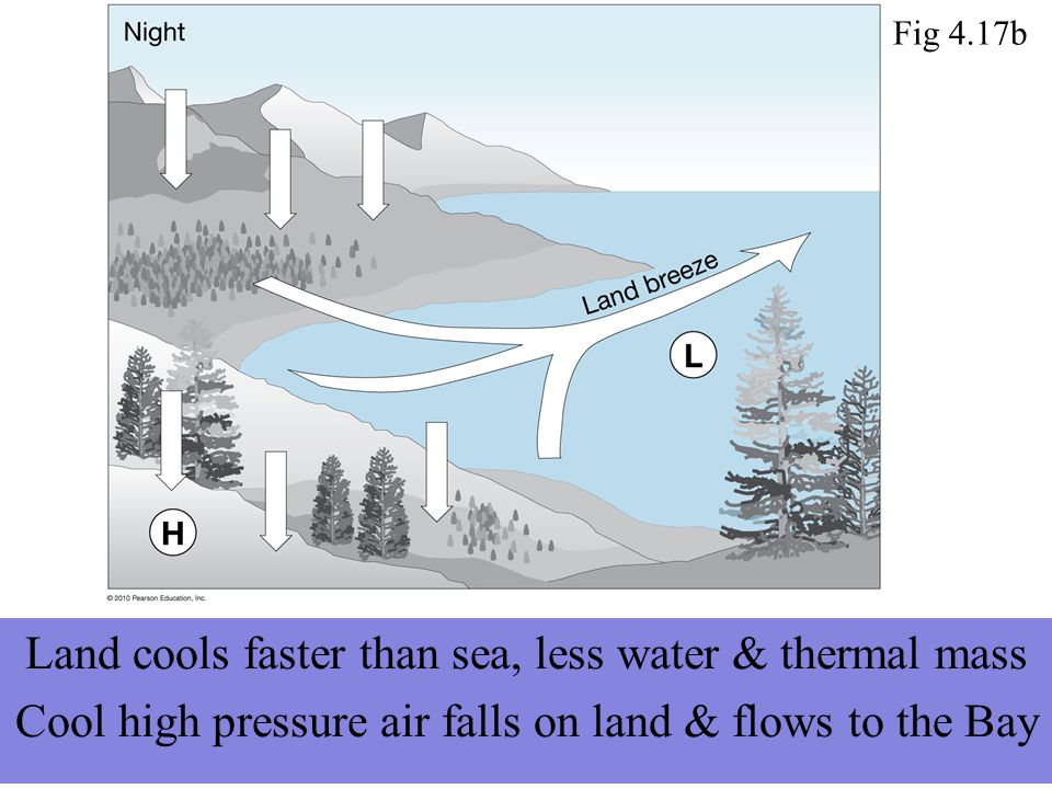 Land cools faster than sea, less water & thermal mass