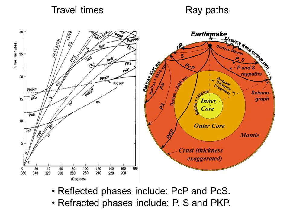 Travel times Ray paths. Reflected phases include: PcP and PcS.