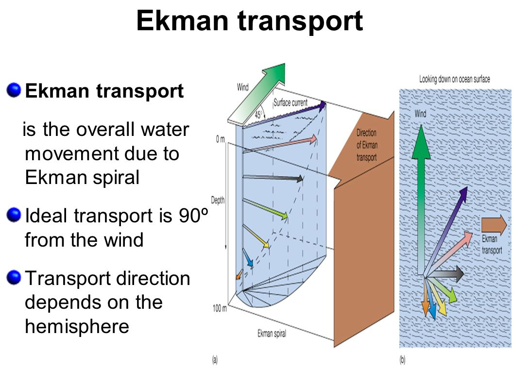 Ekman transport Ekman transport
