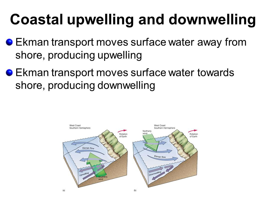 Coastal upwelling and downwelling