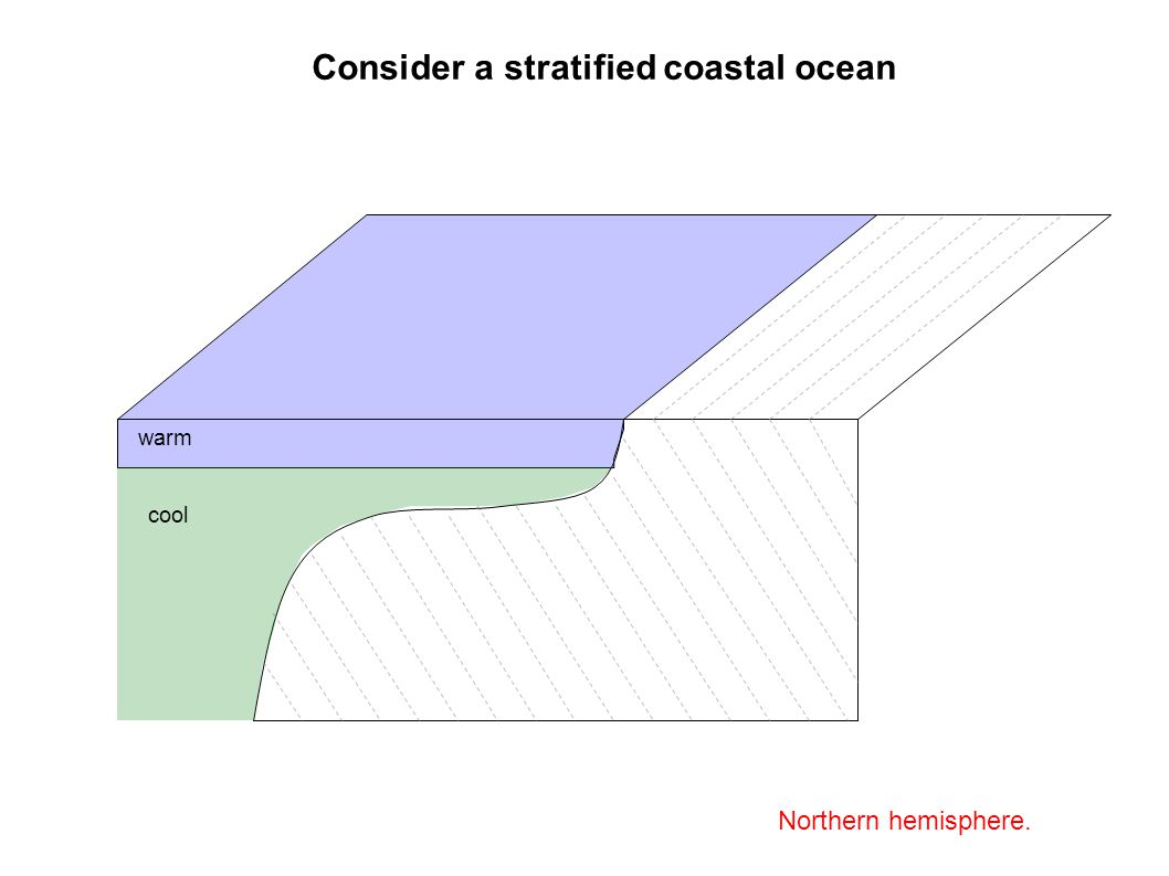 Consider a stratified coastal ocean