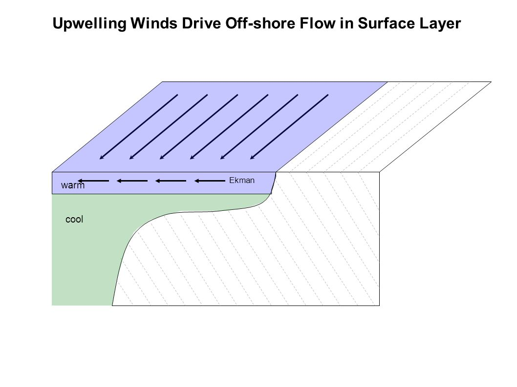 Upwelling Winds Drive Off-shore Flow in Surface Layer