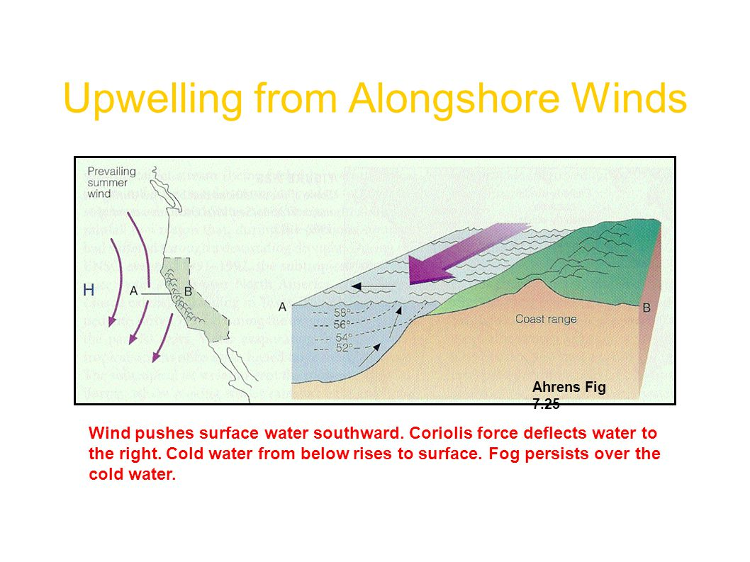 Upwelling from Alongshore Winds