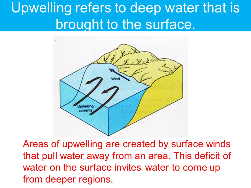 Upwelling refers to deep water that is brought to the surface.