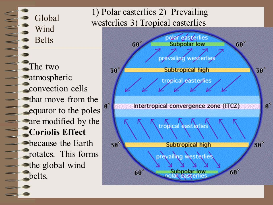1) Polar easterlies 2) Prevailing westerlies 3) Tropical easterlies