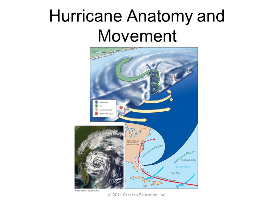 Hurricane Anatomy and Movement