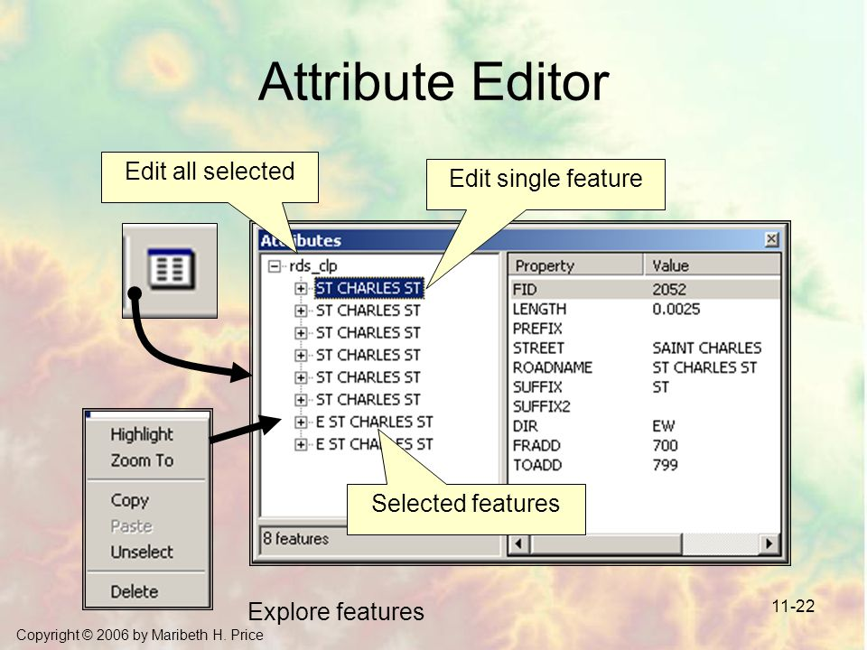 Attribute Editor Edit all selected Edit single feature