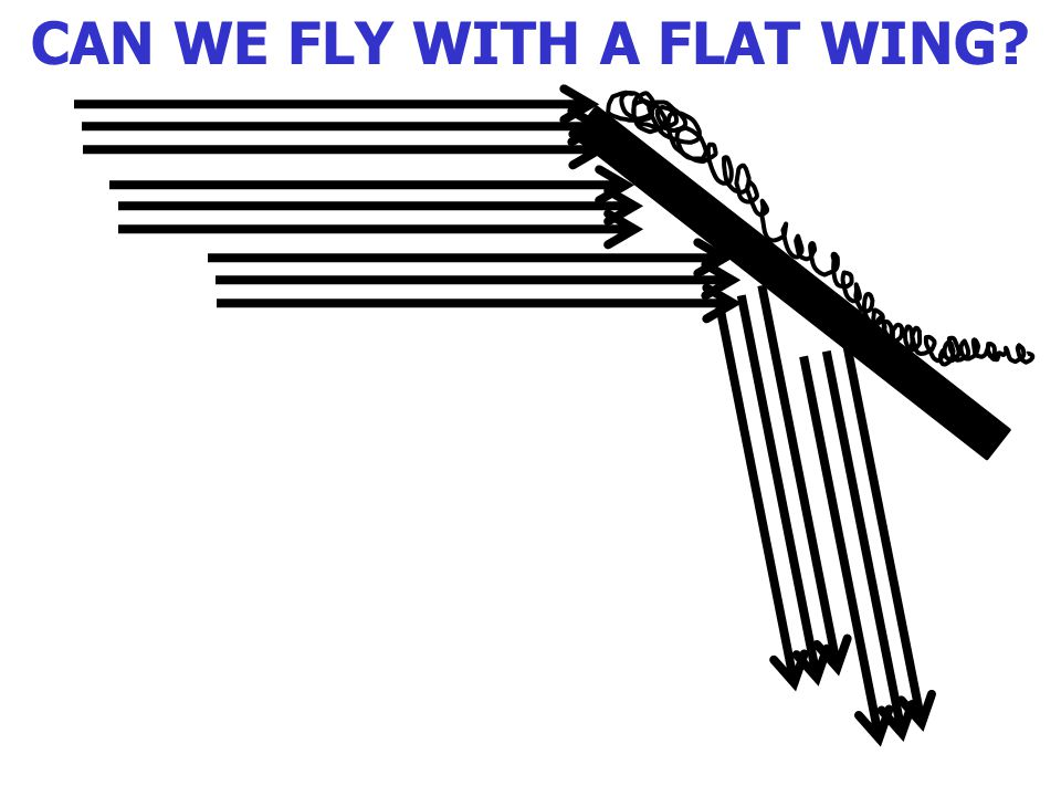 CAN WE FLY WITH A FLAT WING