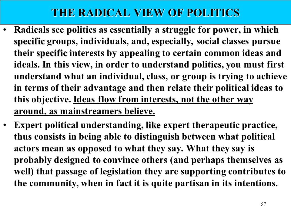 THE RADICAL VIEW OF POLITICS