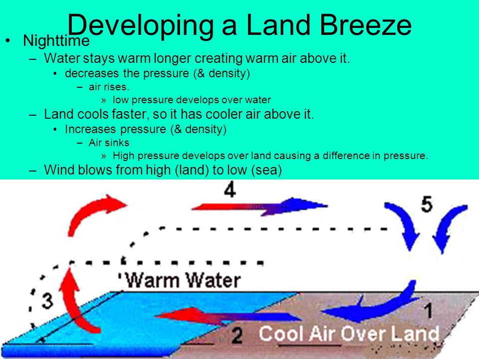 Developing a Land Breeze