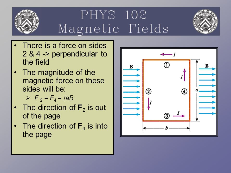There is a force on sides 2 & 4 -> perpendicular to the field