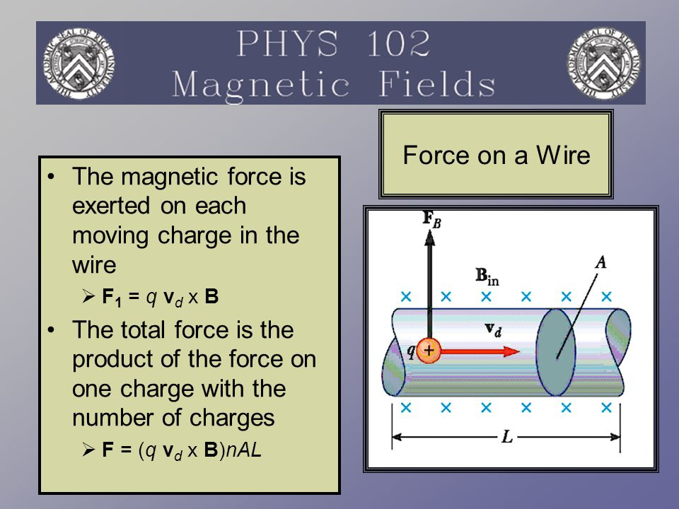 Force on a Wire The magnetic force is exerted on each moving charge in the wire. F1 = q vd x B.