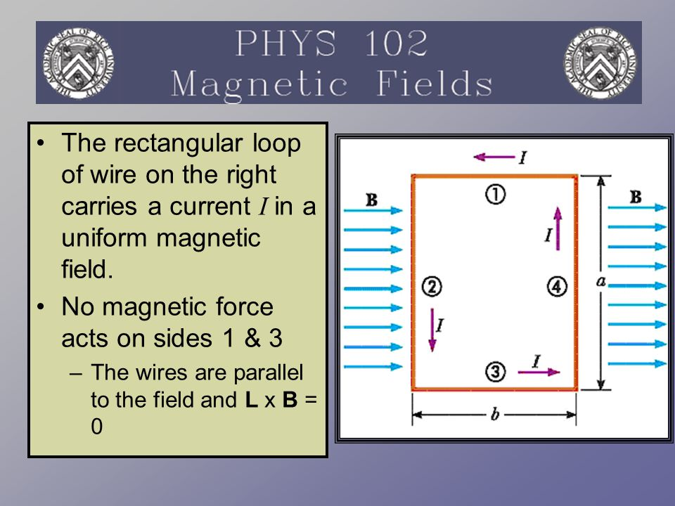 No magnetic force acts on sides 1 & 3