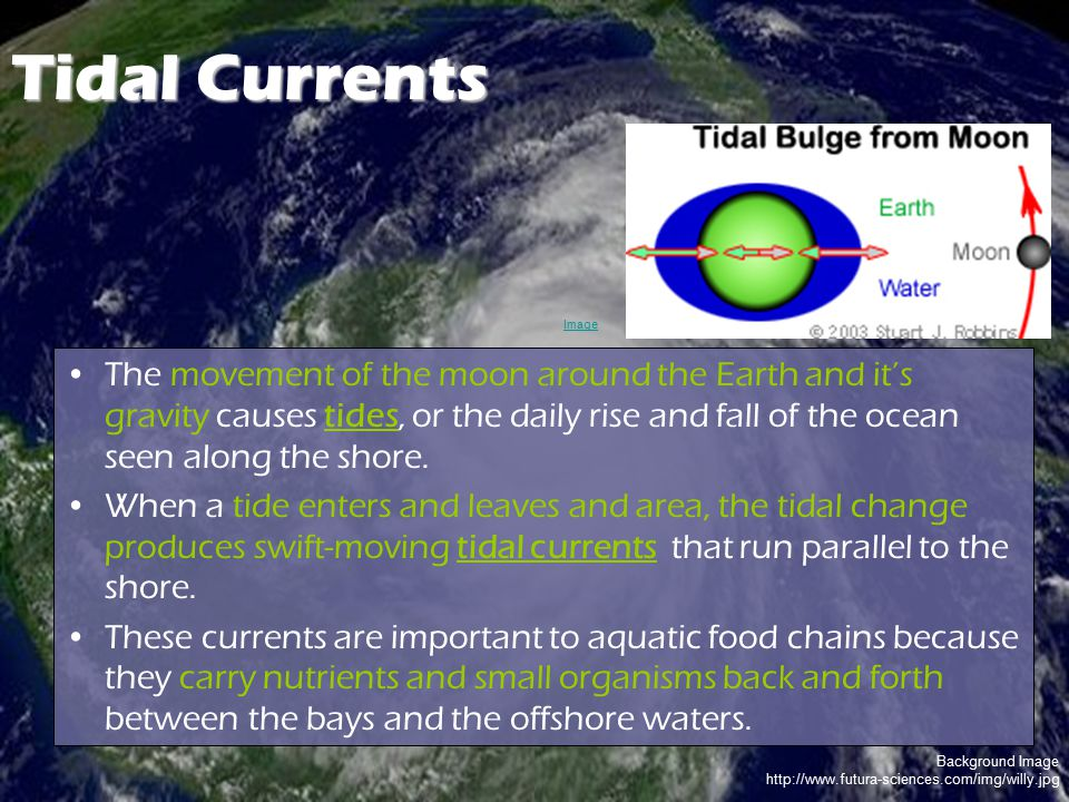 Tidal Currents Image.