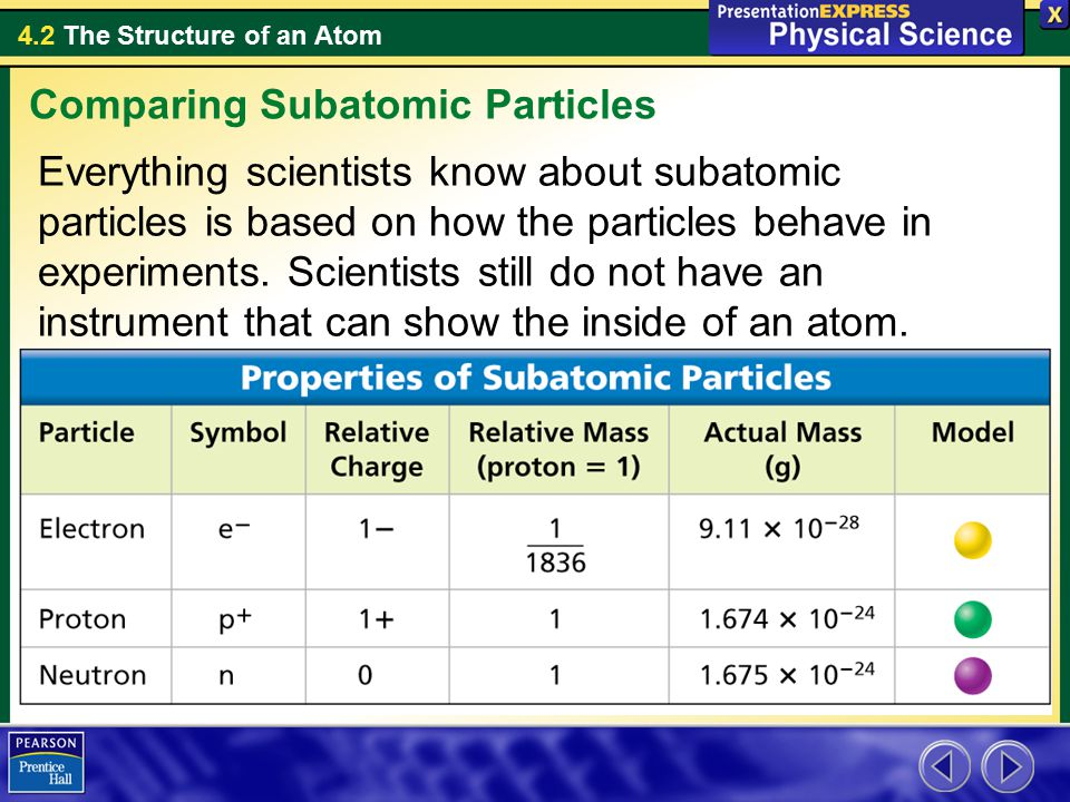 Comparing Subatomic Particles